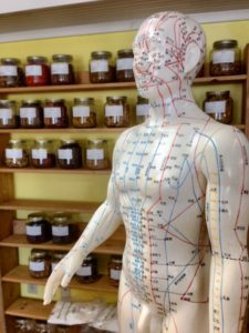 acupuncture Campbelltown